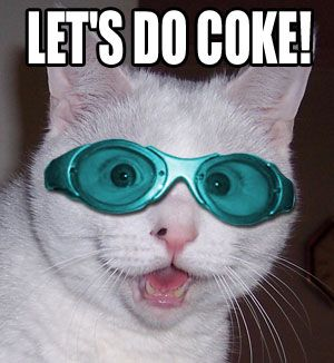 lets do coke cat