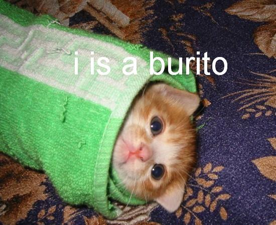 i is burito