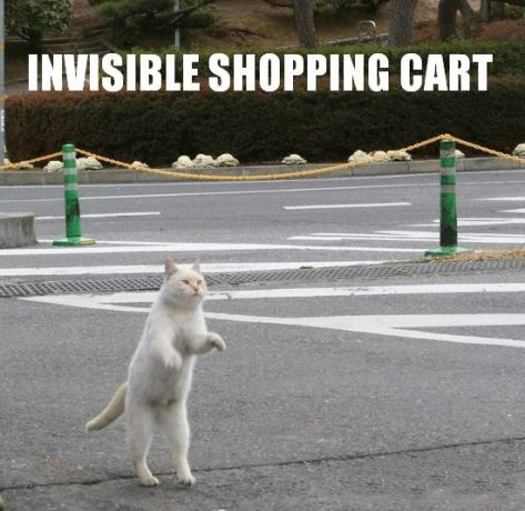 Invisible Cart