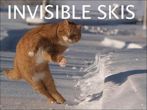 Invisible Skis