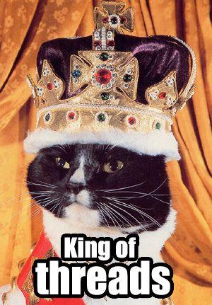 king_cat.jpg