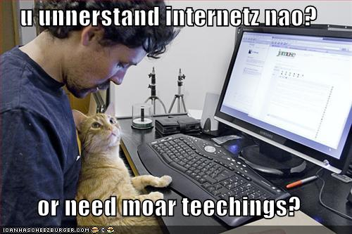 cat teaching the internet