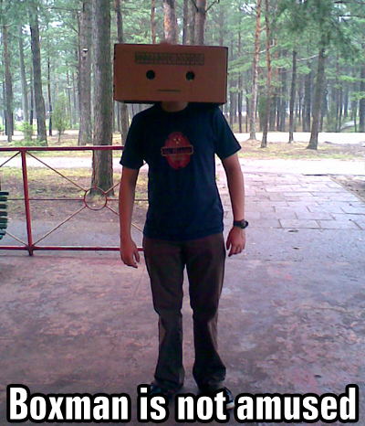 boxman is not amused Sexy Adult Le Belle Harlequin Costume   Sexy Halloween Costumes
