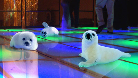 Seal clubbers