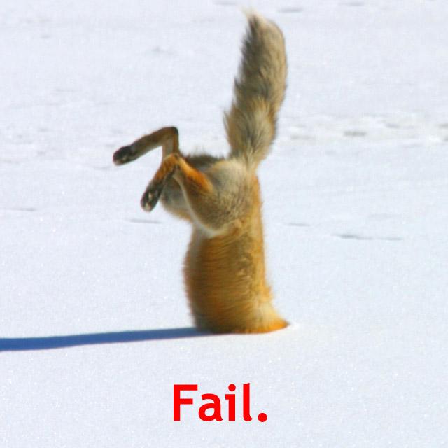 fail_2.jpg