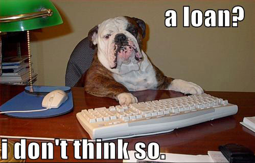 [Image: loan_dog.jpg]