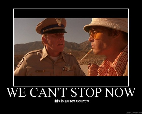 This is Busey Country